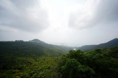 The Mount Austin